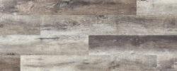 Buckeye Plank