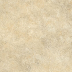 Cezanne 531